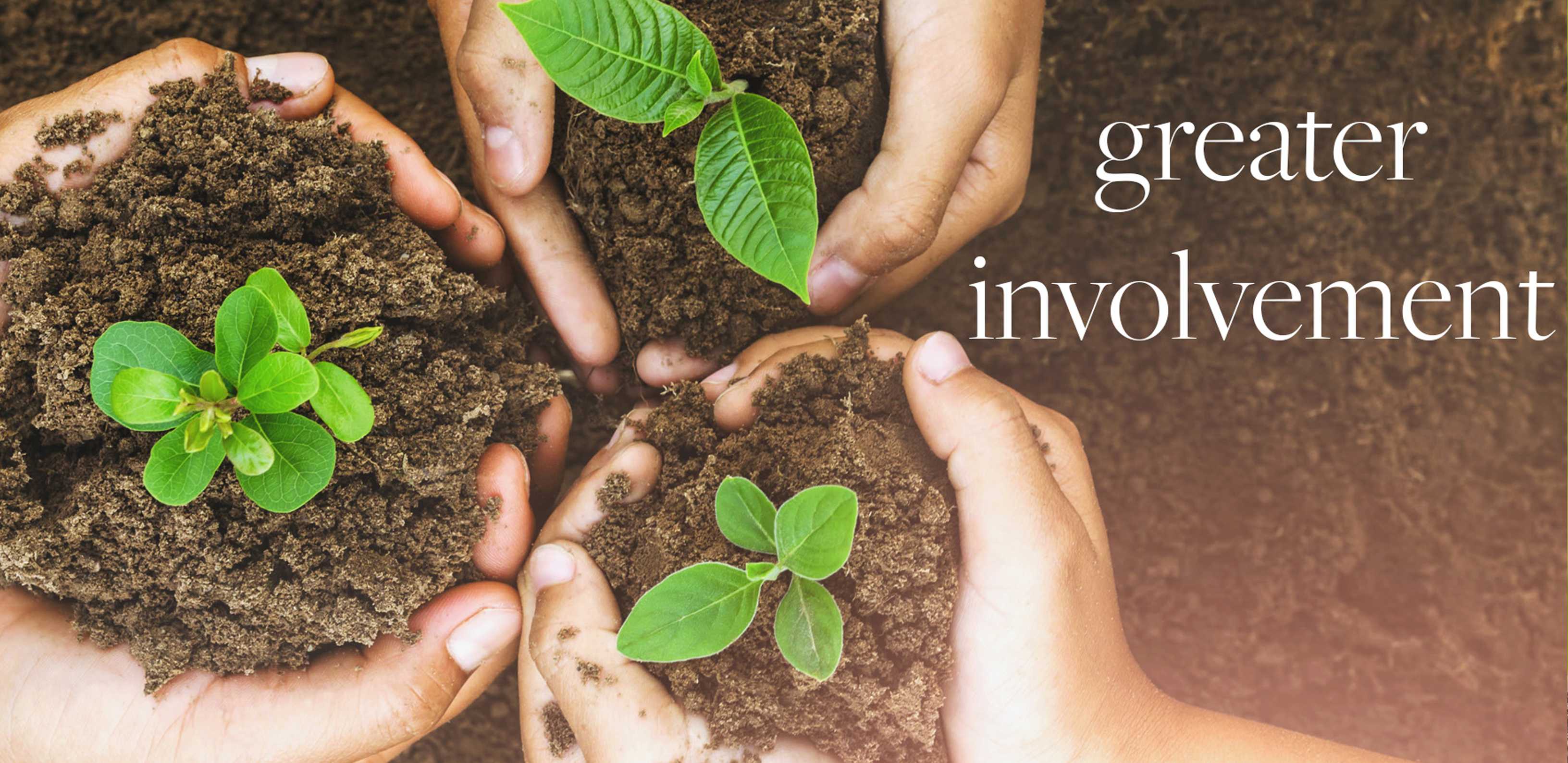 get involved take action sustainability